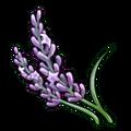 Lavender (ToV).png