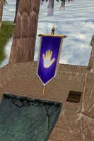 Celestial Hand Banner of the Tower Live