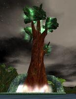 Great Deru Tree Live