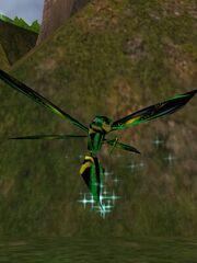Jungle Phyntos Wasp Live