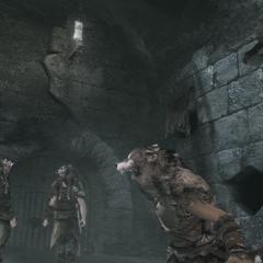 Een volgeling verzamelt de anderen om tegen Ezio te vechten.