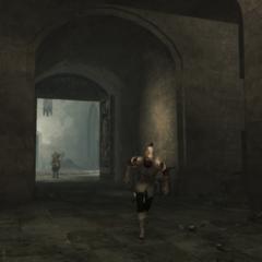 Een wachter vlucht voor Ezio.