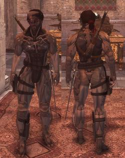 Ezio-raiden-brotherhood