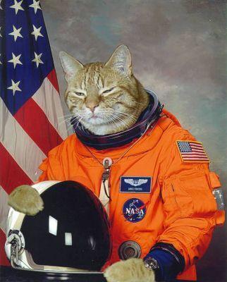 File:Real Space Kat.jpg