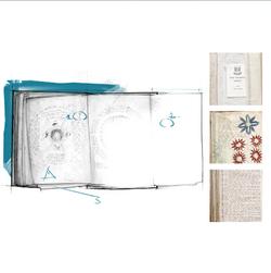 AC4 Voynich Manuscript