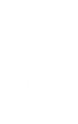 File:IDF5.png