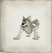 Jagd Wolf