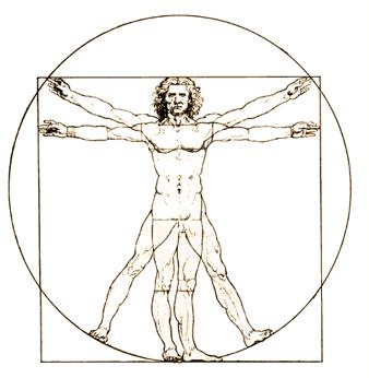 File:Anatomical man.png