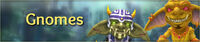Gnomes banner
