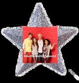 Ally 12232's ornament