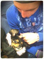 Pixie (6)