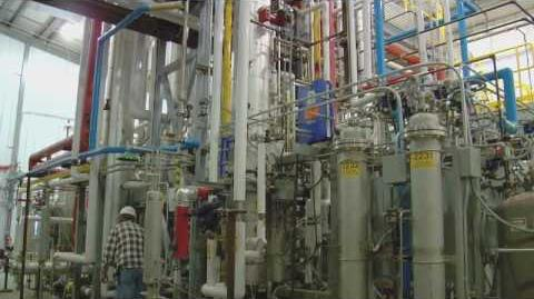 A New Biofuels Technology Blooms in Iowa