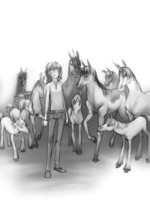 Emily finds the unicorns