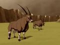 Gemsbok bull.png