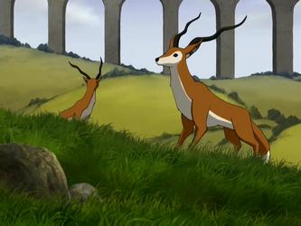 File:Fox antelope.png