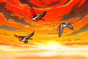 Messenger hawks