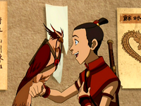 Hawky and Sokka