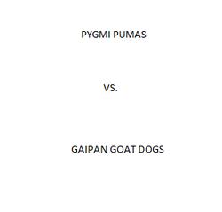 R1 PP vs GD