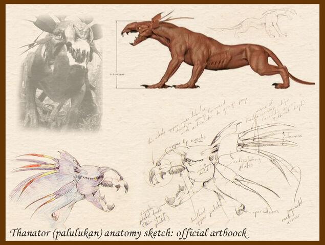 File:Thanator anatomy sketch 1 by hontor.jpg