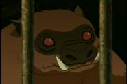300px-Zwijn aap