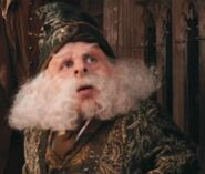 Warwick Davis as Professor Flitwick (COS)