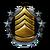 Agent Rank Icon 11