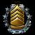 Agent Rank Icon 10