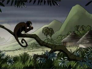 African Monkey AEMH