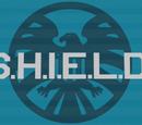 S.H.I.E.L.D (Tarcza)