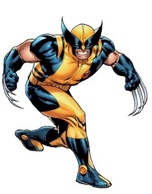 File:Wolverine .jpg