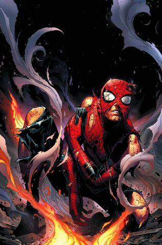 File:Spiderman in Avengers.jpg