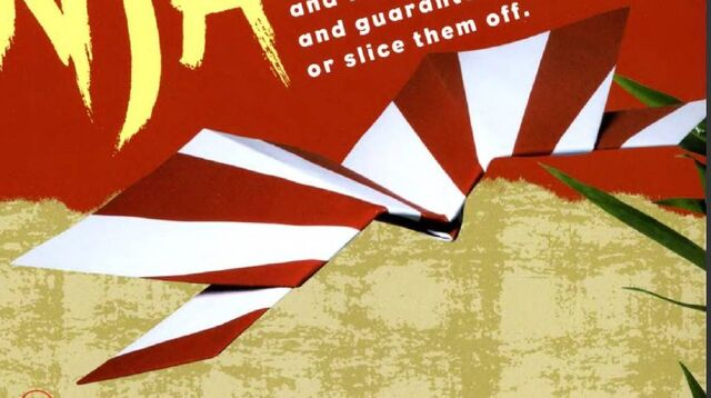 Archivo:Flying ninja 1.jpg