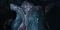 Ovomorph (Planet 4)