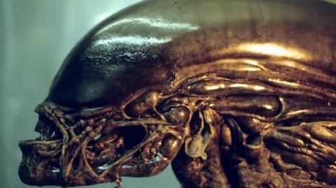 Alien 3 Behind The Scenes, Alec Gillis-Camera and Tom Woodruff Jr. Performing Suit Test