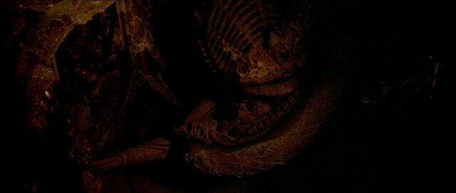 File:Dragon in wall.jpg