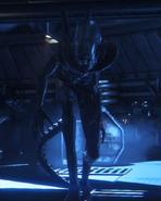 Alien Isolation Larger