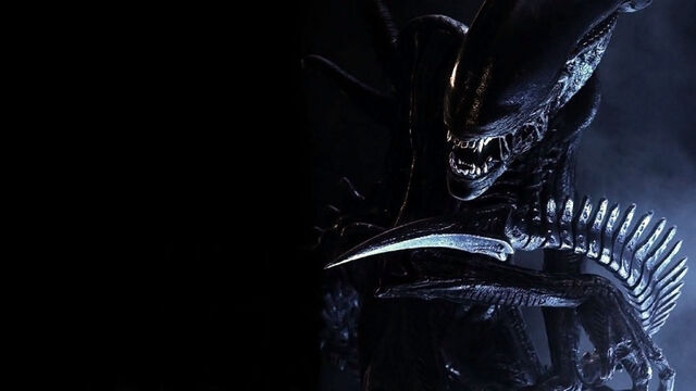 File:15258 aliens xenomorph.jpg