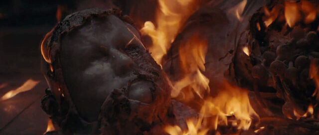 File:Ash's head is burnt.jpg