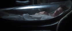 Ripley in hypersleep