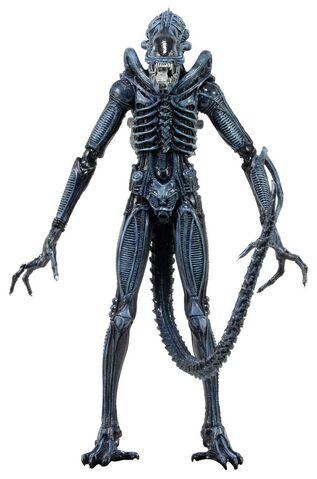 File:NECA Aliens Series-2 03.jpg