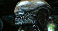 Thumbnail for version as of 03:51, November 8, 2012