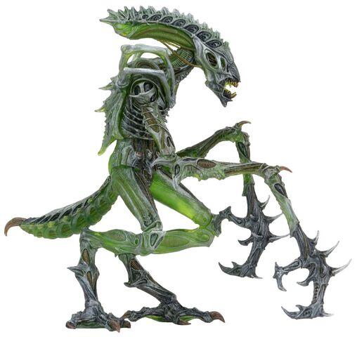 File:1200x-Mantis3-.jpg