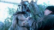 Predators-antal-directing-one-of-the-predators