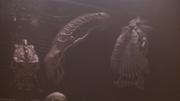 P2-the alien skull-1-