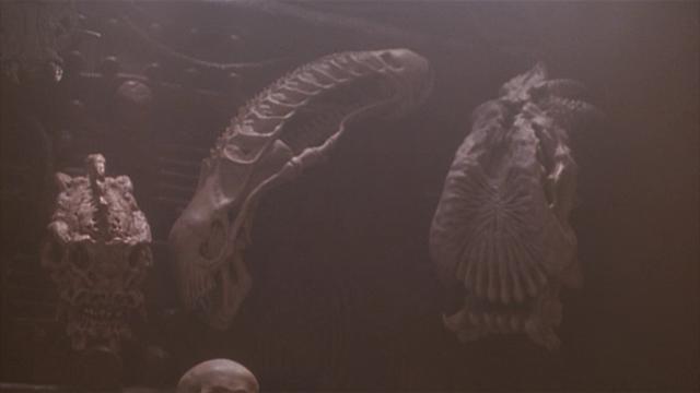 File:P2-the alien skull-1-.png