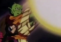 Piccolo slug 9
