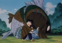 Gohan with fish ty