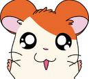 Hamtaro (Character)