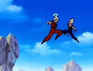 Goku & Majin Vegeta Fighting