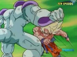 Super Saiyan Goku & Frieza Fighting 3